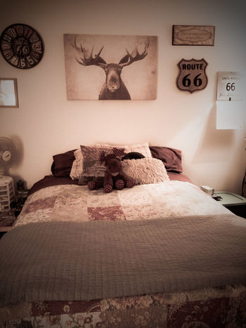 Moose Decor Oregon Farmhouse Vintage Cars Classic Car Route 66 No People Indoors  Bed Home Interior Bedroom Built Structure Pillow