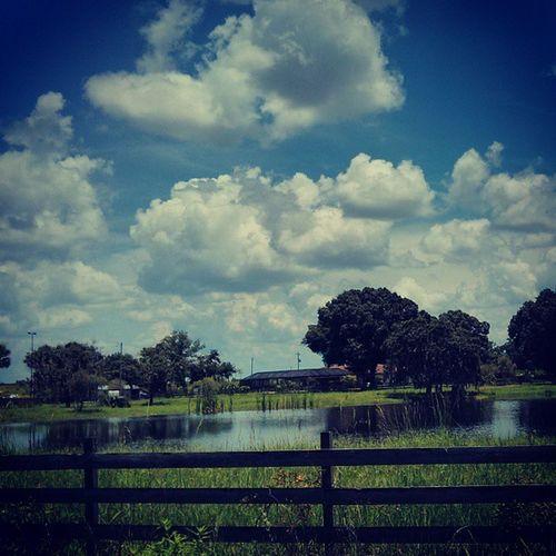 Ranch life Immokalee Immtoday