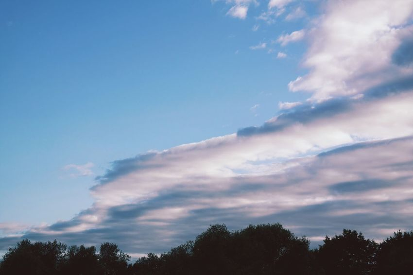 sunday eve Sky Cloud - Sky Beauty In Nature Nature Low Angle View Scenics Tree Tranquility No People Silhouette Tranquil Scene Blue Outdoors Day Sunset Contrail EyeEm Nature Lover EyeEm Gallery