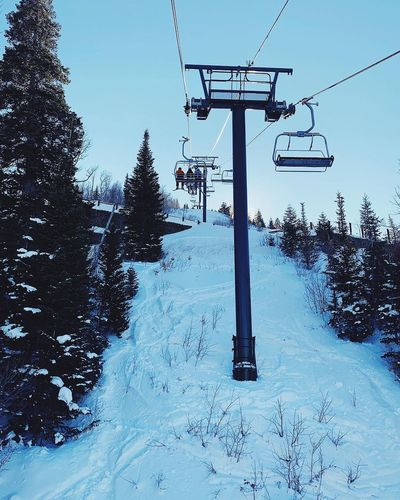 bluebird day. Wasatch Mountains Park City, Utah Deer Valley Resorts Snow Sky Winter Nature Cold Temperature Tree Day
