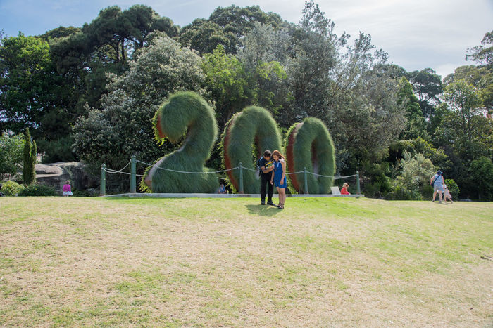 Sydney,NSW,Australia-November 20,2016: Royal Botanic Gardens with planting display for the 200th year anniversary and tourists in Sydney, Australia 200 Years Old Australia Celebration Couple Exploring Grass Mobile Phone Plant Royal Botanic Gardens Tourist Tourist Attraction  Travel Anniversary Connection Couple - Relationship Garden Greenery Leisure Activity Lush Foliage Number People Real People Sydney Weekend Activities Young Adult