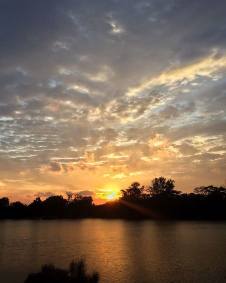 Sunset Nature Nparksbuzz Nparks Punggol Waterway Sunset_collection