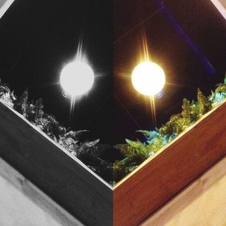 Smile... Night Outdoors First Eyeem Photo