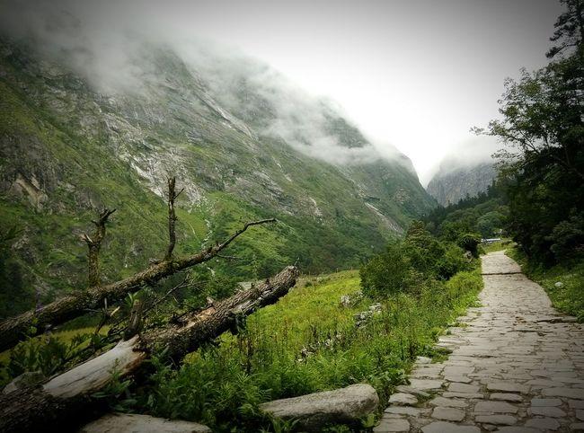 Ghagria Uttarakhand India The Way Tadaa Community Edge Of The World What I Value Blissful Nature Eyem Gallery