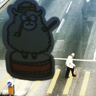 Crossing street Elder Street HongKong Day NgongPing Visithongkong Tourist Hktourismboard Canon Bestoftheday Picoftheday Colour Selected Travel ASIA Yearofthesheep DigitalRev