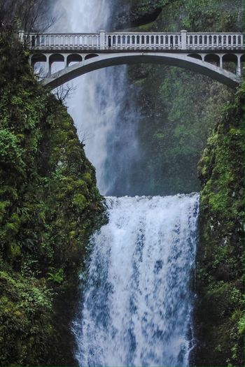 Water Waterfall Waterfalls Waterfall_collection Nature Bridge - Man Made Structure Bridge Bridge View Outdoors Beauty In Nature Motion Green Color Green Greenery Multnomah Falls  EyeEmNewHere