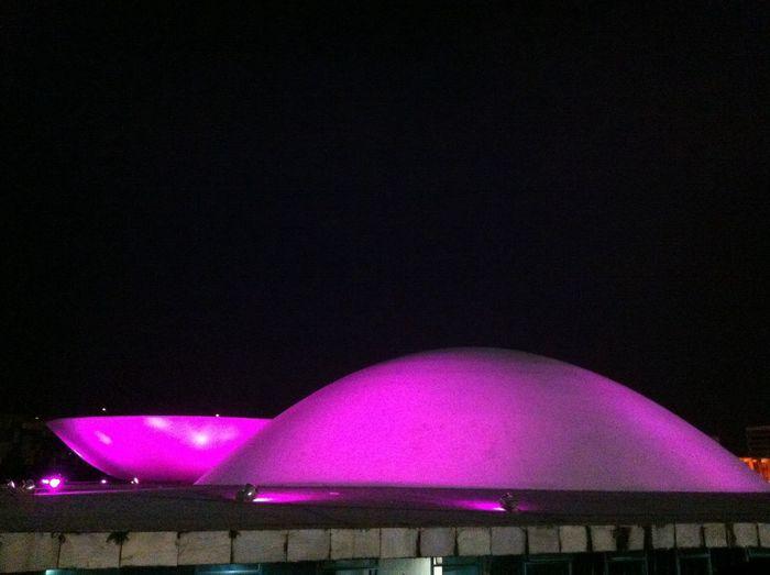 Shame on mine brains. Proud on pink. Shot of hope. Pink Political Sorry Esplanada