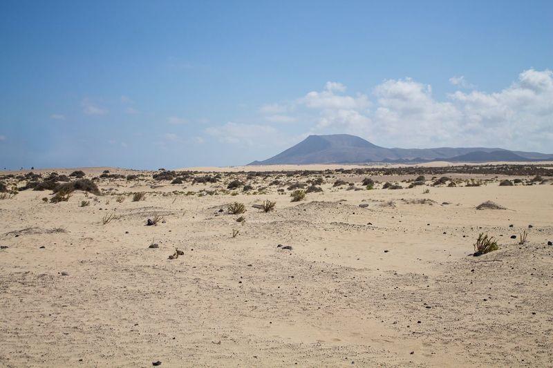 Corralejo Duna Fuerteventura Islas Canarias Canary Islands Kanaren Kanarische Inseln Dunes Dune Dünen