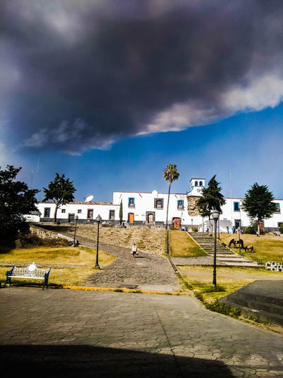 EyeEmNewHere Tree Sky Cloud - Sky
