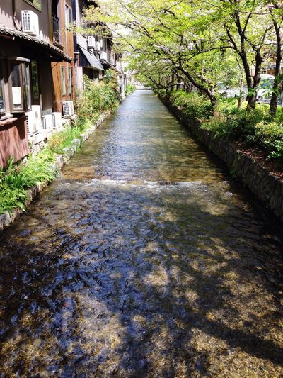 Water_collection Kyoto