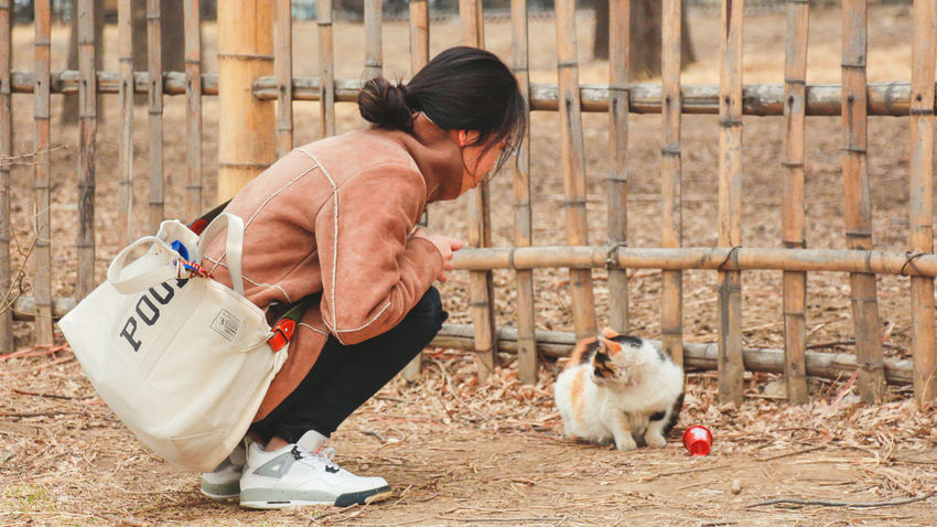 EyeEm Selects Domestic Animals Mammal Domestic Pets One Animal One Person Boundary Fence Livestock Adult Day Farm Barrier Agriculture Outdoors Nature Lifestyles