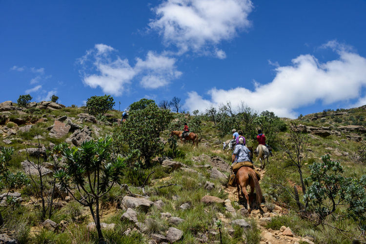 Rear view of people on mountain against sky