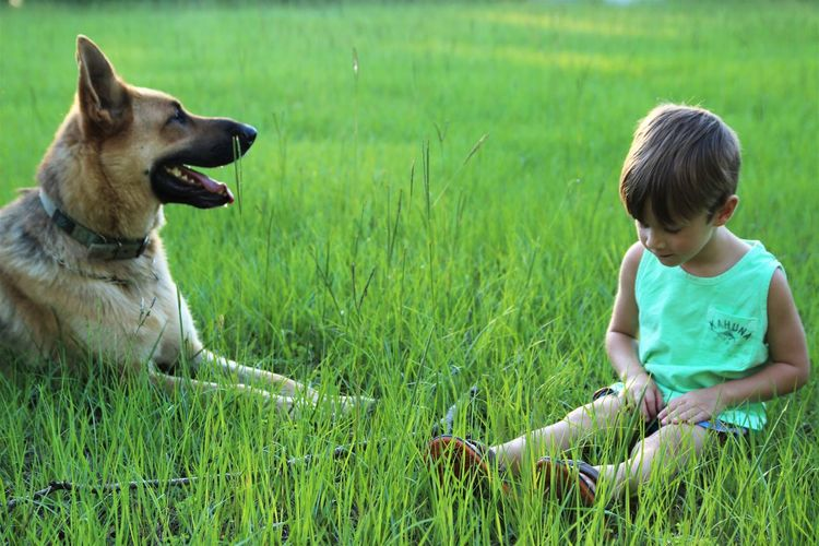 A Boy And His Dog Day Dog Family Pet Grass Late Evening Mans Best Friend One Boy Outdoors Outside Pet Playful Playing Sun Breathing Space Pet Portraits The Week On EyeEm Be. Ready. Summer Exploratorium