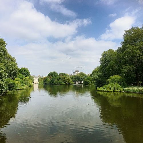 An oasis of calm in a hurried and fast-paced city. EyeEmNewHere Sunshiny Day London Eye St James Park London  Tree Water Sky Cloud - Sky Nature Reflection Beauty In Nature Tranquility Outdoors No People Lake Tranquil Scene Waterfront Day EyeEmNewHere
