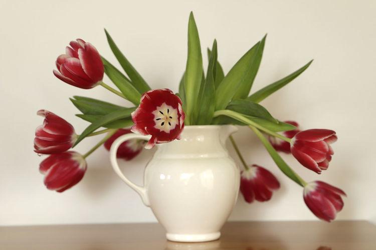 Off white vase