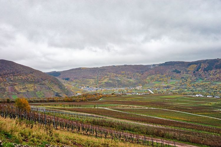 Autumn in Germany Autumn Autumn Colors Winefields Beauty In Nature Cloud - Sky Day Field Germany Landscape Mountain Nature No People Outdoors Scenics Sky Wine