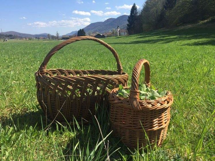 Basket Field Agriculture Grass Outdoors Landscape Day Rural Scene Mountain Growth No People Nature Freshness