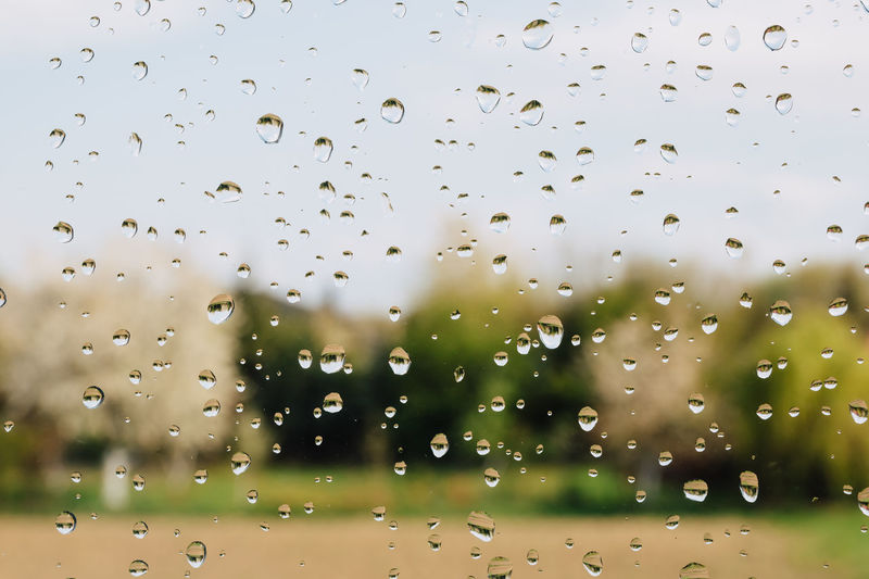 Rain drops on window against field and forest. Drop Water Wet Rain Transparent Close-up Nature Focus On Foreground Window Full Frame Glass - Material Day Backgrounds Outdoors RainDrop Freshness Rainy Season Purity Abstract Rainy Days Rain Droplet Trees Forest Field