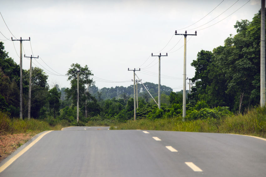 Tree Cloud - Sky Electricity  The Way Forward Day Road Electricity Pylon Power Supply Sky Technology Transportation No People Cable Fuel And Power Generation Telephone Line Outdoors Nature Electricity  Electro Sutet Roads Nature Landscape