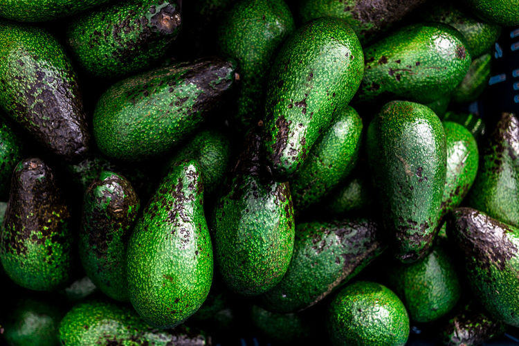 fresh avocados 👅 Avocado Light And Reflection Backgrounds Close-up Composition Eye4photography  EyeEm Best Shots Food Freshness Full Frame Green Color Healthy Healthy Eating Healthy Food Healthy Lifestyle Light And Shadow Nature Textured  Textures And Surfaces Top Perspective Vegan Vegan Food Veganfoodporn Vegetable Veggie