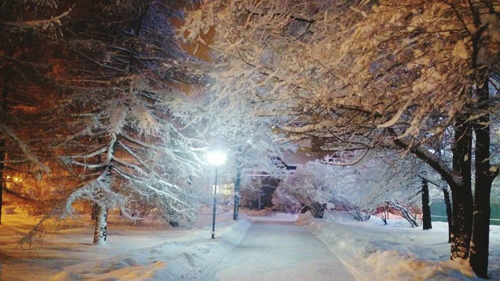 Arkhangelsk Sony Xperia Z2 Narfu Nightview Wintertime Snow Snow ❄ Streetphotography Streetview