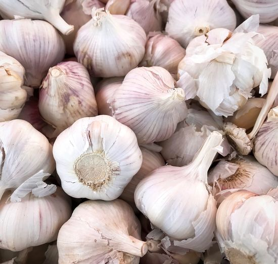 Fresh garlic Garlic Close Up Spices For Food Spices Garlic Fresh Garlic Garlic Garlic Bulb Vegetable Food Food And Drink Raw Food Ingredient Close-up Healthy Eating