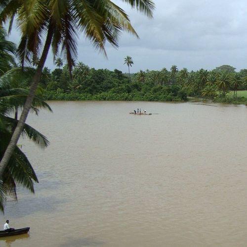 Karnatka Suratkal River Fishing India Mangalore Train Konkan Green Awesome Instalike Instagreat Instamood Cool