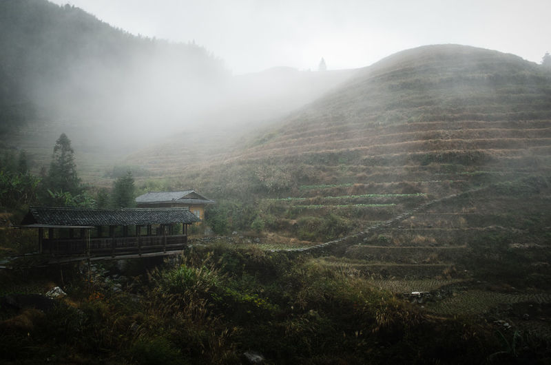 Longji rice terraces Agriculture China Ethnic Minorities Farmland Fog Foggy Day Landscape Mountain Nature No People Outdoors Rice Paddy Rice Terraces Rural Scene Travel Destinations Miles Away The Great Outdoors - 2017 EyeEm Awards