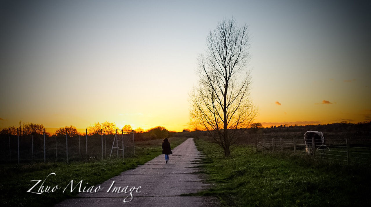 sunset, full length, tree, bare tree, walking, sky, real people, outdoors, road, silhouette, the way forward, grass, one person, clear sky, landscape, nature, beauty in nature, animal themes, day, people