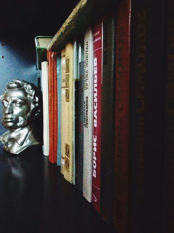 Books Pushkin  Mini Library in 8 class