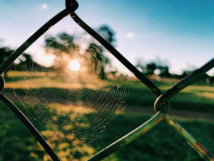 Close-up of spider web on fence against sky