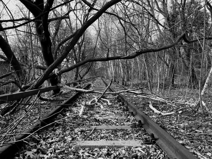 Lost places, on the way to an Abandoned Train Station ! Myfuckingberlin Railway Nature Historic Perspective Blackandwhite Blackandwhite Photography Black And White Collection  Hidden Places