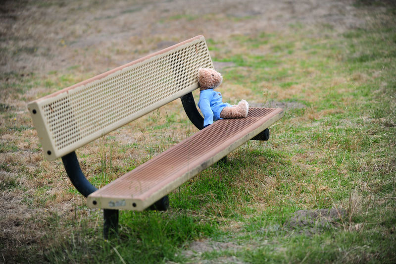 Toy on bench outdoors