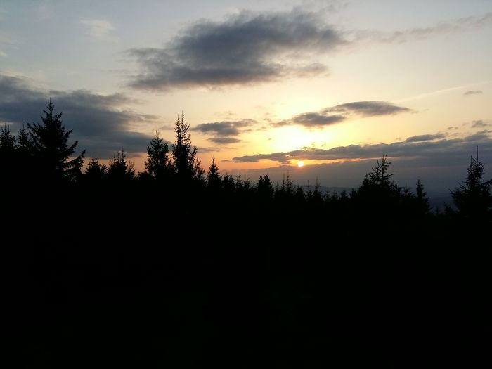 Sunset in Beskydy Imposant Landscape Nature Environment Land Forest Tree Sky Sunset Tranquility Beauty In Nature Nature Scenics - Nature Tranquil Scene Pine Tree Pinaceae Non-urban Scene Coniferous Tree Silhouette Plant Cloud - Sky No People Beskydy Moravia Czech Republic