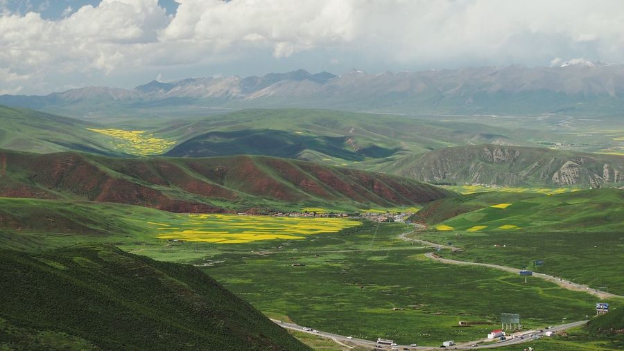 Showcase July Outdoors Summer Green RapeFlowers Rapeseed Field Mountain View Menyuan Qinghai Summertime From My Point Of View