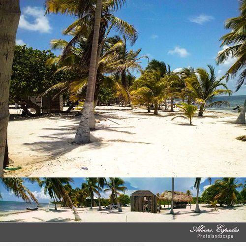 Es un motivo de orgullo vivir en un paraíso como lo es Quintana Roo OPB