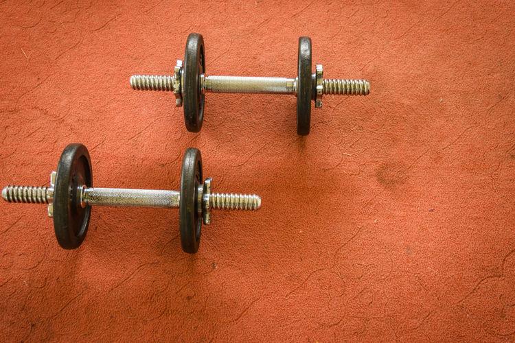 Dummbell exercise Exercise Fitness Gym Healthy Lifestye Sport Training Workout