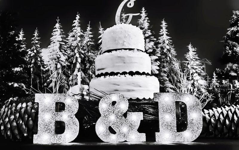 Cake Darryn Doyle Check This Out Festive Season Decoration Celebration Centerpiece Bauble King - Royal Person Renaissance Pavilion