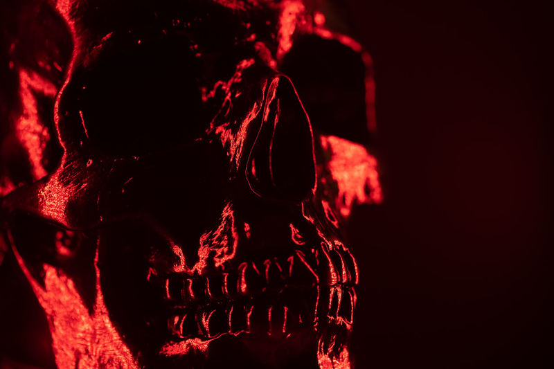 Ancient human skull head close-up. Neon red light. Spooky and sinister. Glamour, disco, halloween concept Close-up Red No People Indoors  Body Part Human Skeleton Dark Spooky Bone  Black Background Anatomy Illuminated Fear Studio Shot Communication Representation