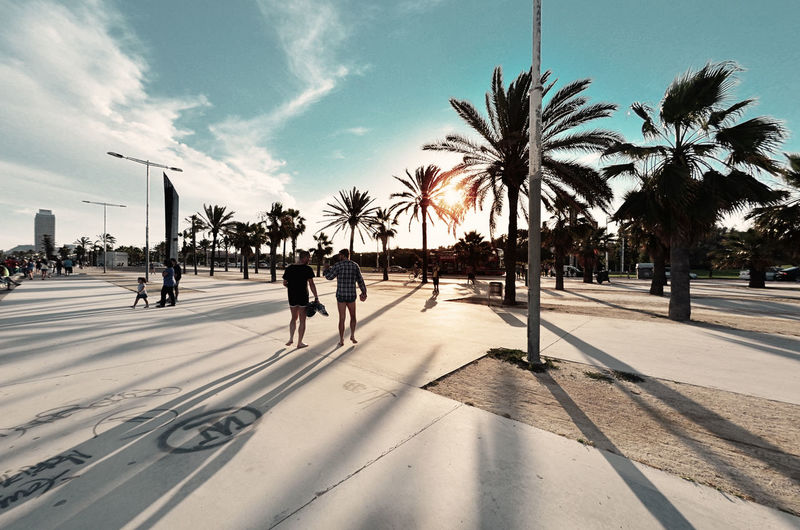 People walking on palm trees in city against sky