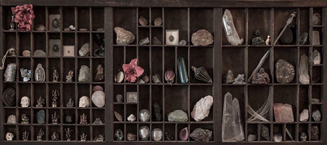 Still Life Fossils Art Vscocam