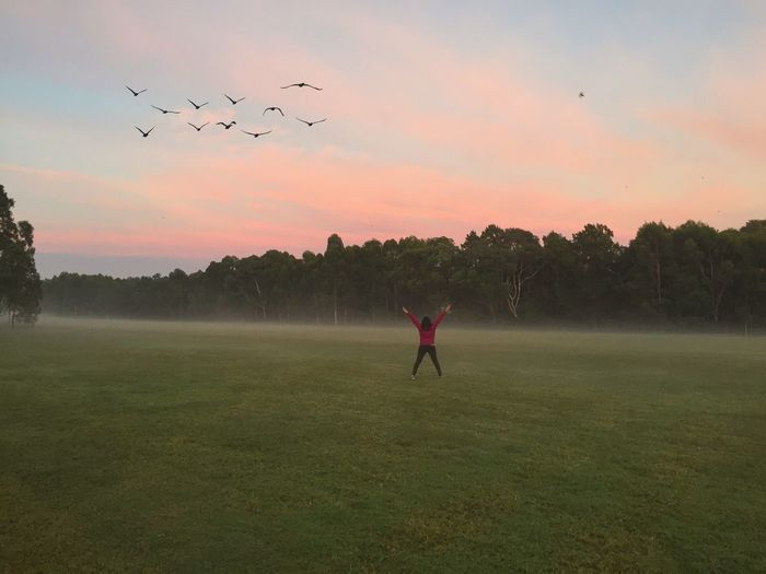 Mornings.. Flying Leisure Activity Real People Foggy Morning Clouds And Sky Nature Grass Scenics Sky Landscape Field Flock Of Birds Beauty In Nature Bird