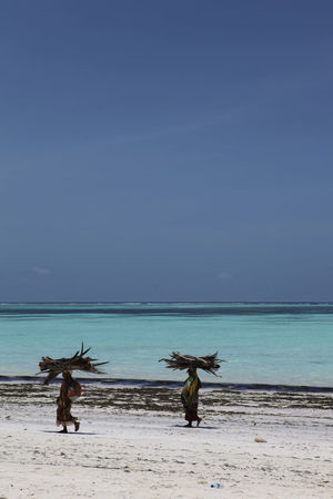 Beach Coastline Holiday Horizon Over Water Sand Sea And Sky Sea View Seascape Tropical Paradise Vacations