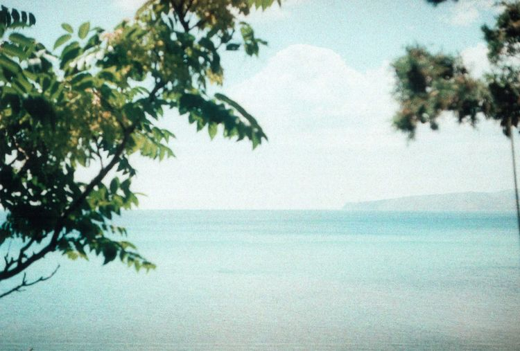35mm 35mm Camera 35mm Film Authentic Authentic Moments Film Film Photography Filmcamera Filmisnotdead Idyllic Nature Outdoors Paradise Real Sea Sky Summer Summertime Tree Unusual Water Wilderness Zenit Zenit122