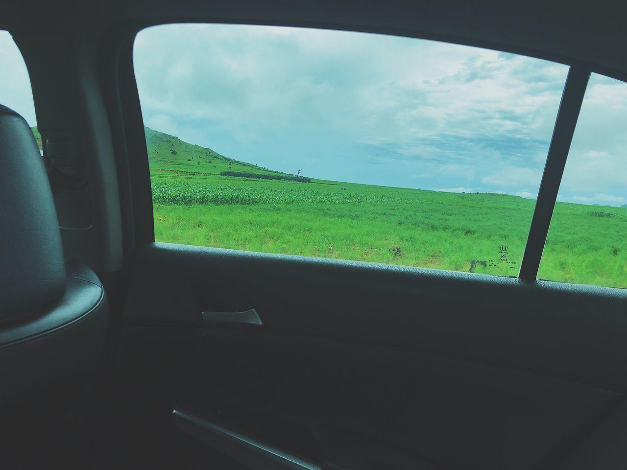 SCENIC VIEW OF FIELD SEEN THROUGH WINDOW
