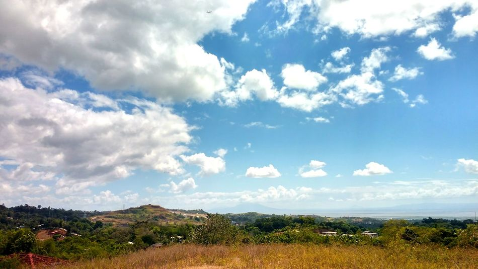 Hills Cloudy Day Sky Blue Sky  Trees Nature