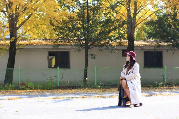 Woman sitting on sidewalk against trees during autumn