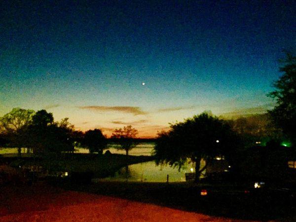 Sky Tree Plant Beauty In Nature Night Illuminated Tranquility