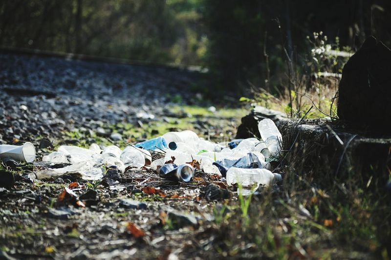 Plastic bottles and cans laying in grass with sunlight hitting them next to railroad tracks in daylight Pollution Pollution In My World Bottle Bottles Of Water Litter Waste Throw Away Garbage Recycle Recycling Sunlight Railroad Track Beautiful Trees Grass Rocks Tossed Rubbish End Plastic Pollution Close-up Grass Scrap Metal Garbage Dump Bottle Cap