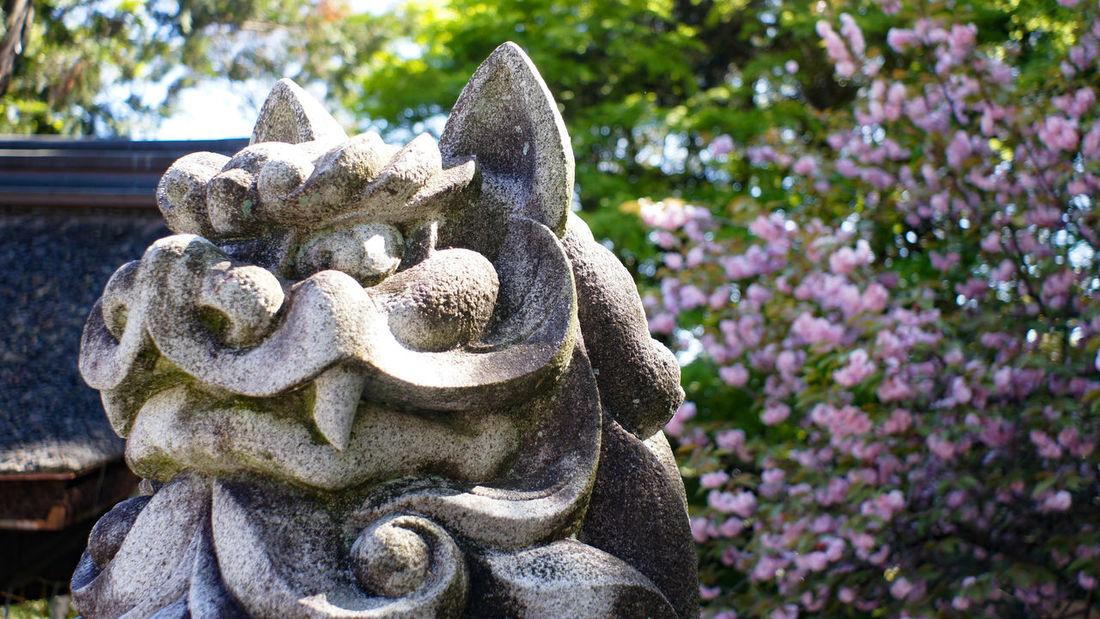 Day Statue Nex5 Takumar 28mm F3.5
